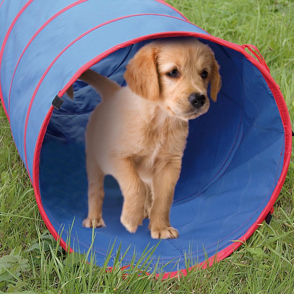 agilitytunnel 60x200 cm hundetunnel tunnel hunde agility spieltunnel ebay. Black Bedroom Furniture Sets. Home Design Ideas